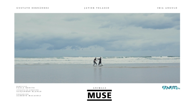 Poster animals muse